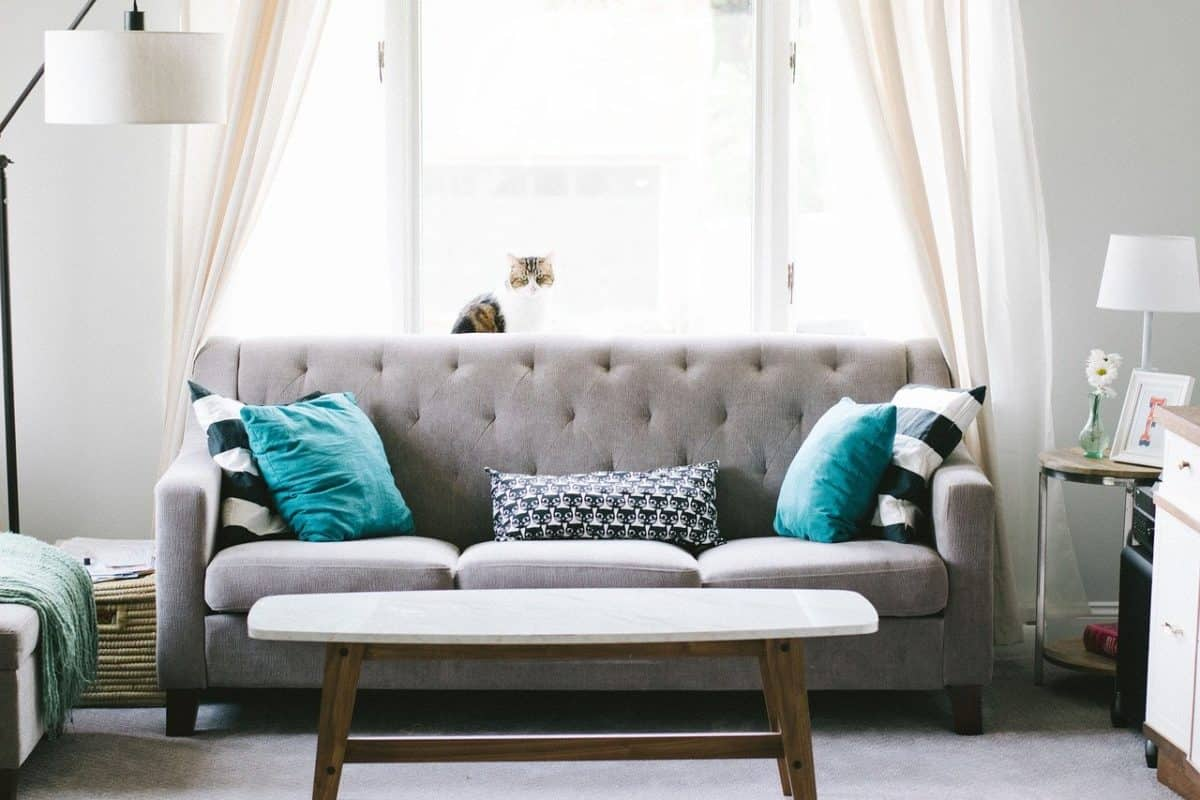 living room, sofa, couch,The 11 Best Futon Sofa Beds For Everyday Sleeping, cheap, budget, comfortable, soft, firm