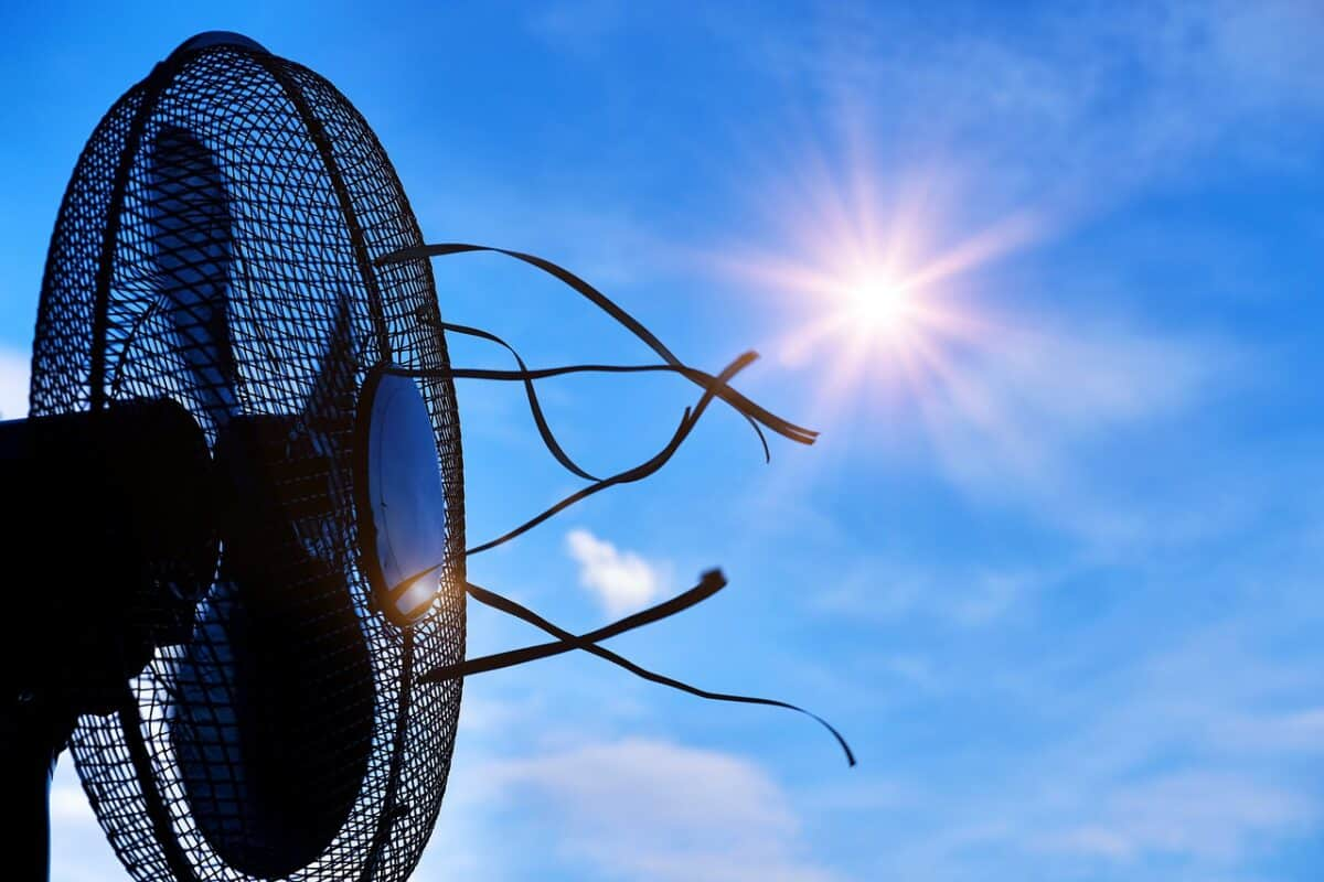 heat, hot, summer, Tower Fans vs Oscillating Fans: What's the Difference and Which One Is Better?